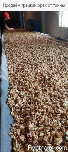 Продаём грецкий орех от тонны