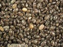 Зерна чиа, Аргентина